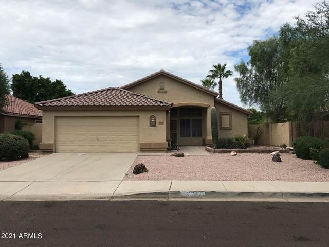 6806 W Quail Avenue, Glendale, AZ 85308 (MLS #6297585) :: CANAM Realty Group