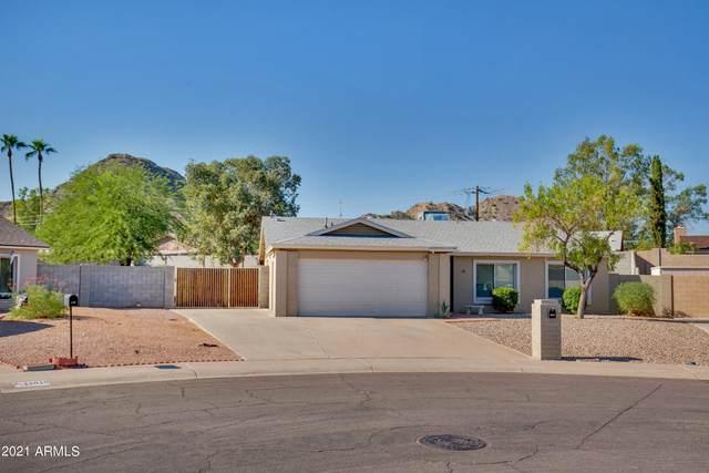 2702 E Dahlia Drive, Phoenix, AZ 85032 (MLS #6297650) :: Elite Home Advisors