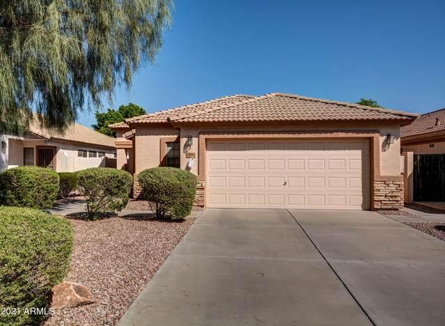 10388 W Tonopah Drive, Peoria, AZ 85382 (MLS #6297652) :: Walters Realty Group