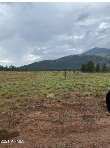 17404 Crowley Trail, Flagstaff, AZ 86001 (#6297661) :: The Josh Berkley Team