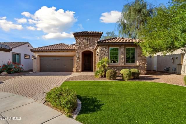 26438 W Sequoia Drive, Buckeye, AZ 85396 (MLS #6297663) :: Executive Realty Advisors