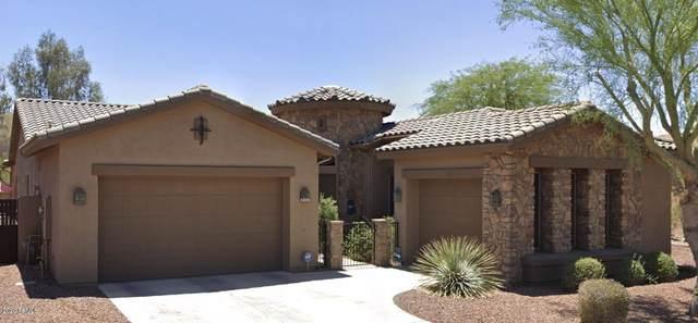 1903 E Latona Road, Phoenix, AZ 85042 (#6297670) :: The Josh Berkley Team