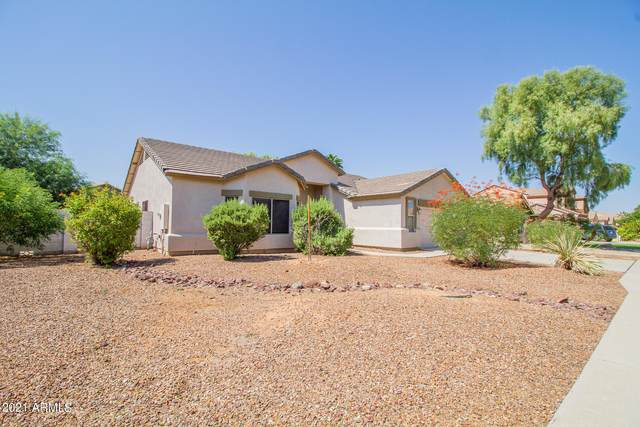 984 N Martingale Road, Gilbert, AZ 85234 (MLS #6297681) :: NextView Home Professionals, Brokered by eXp Realty