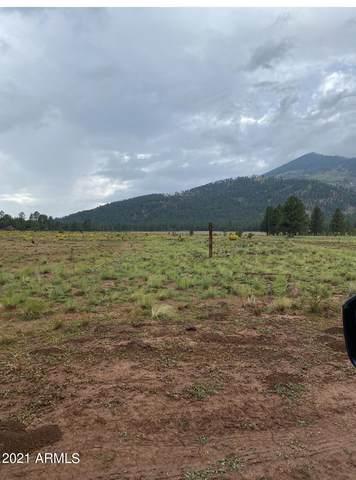 17404 Crowley Trail, Flagstaff, AZ 86001 (#6297689) :: The Josh Berkley Team