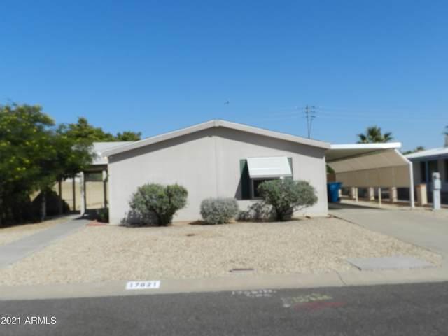 17621 N 15TH Place, Phoenix, AZ 85022 (MLS #6297695) :: D & R Realty LLC