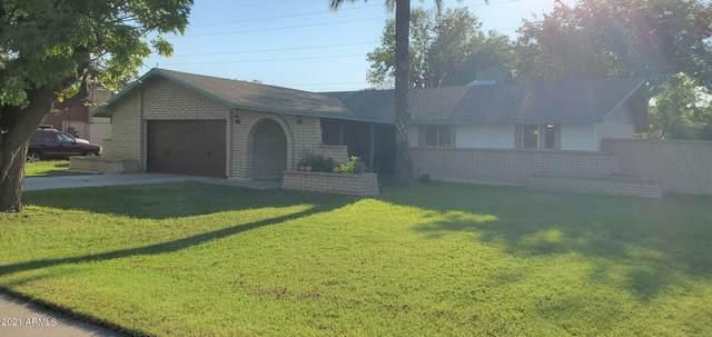 1108 N Barkley, Mesa, AZ 85203 (MLS #6297704) :: Power Realty Group Model Home Center