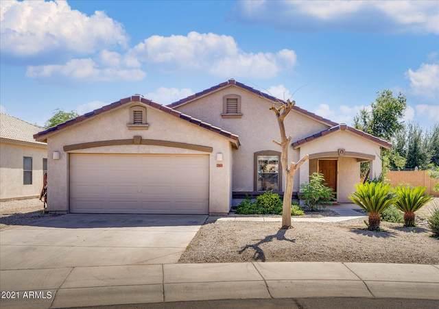 2103 E Friesian Drive, San Tan Valley, AZ 85140 (MLS #6297740) :: Yost Realty Group at RE/MAX Casa Grande