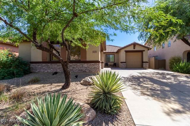 2435 W Memorial Drive, Phoenix, AZ 85086 (MLS #6297757) :: Yost Realty Group at RE/MAX Casa Grande