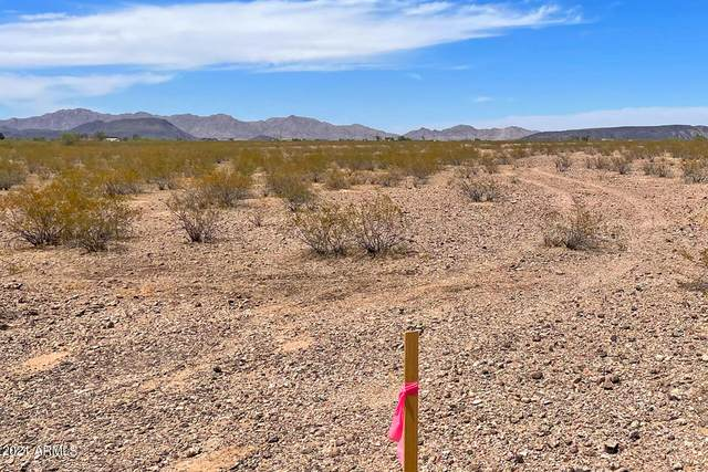 000 Orange Drive, Tonopah, AZ 85354 (MLS #6297762) :: Elite Home Advisors