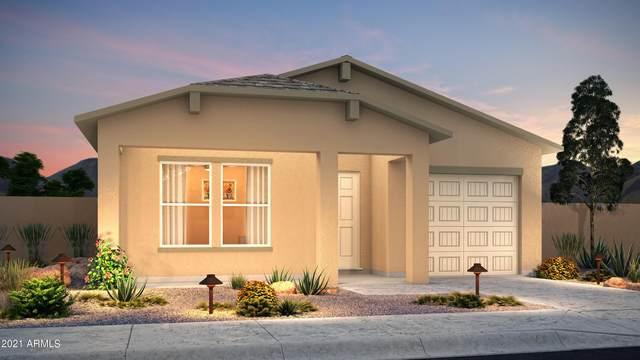 10144 W Santa Cruz Boulevard, Arizona City, AZ 85123 (MLS #6297773) :: Power Realty Group Model Home Center
