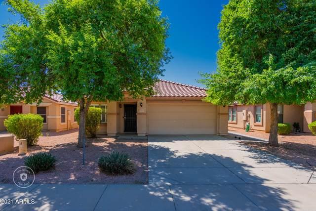 15425 W Cameron Drive, Surprise, AZ 85379 (MLS #6297776) :: Executive Realty Advisors