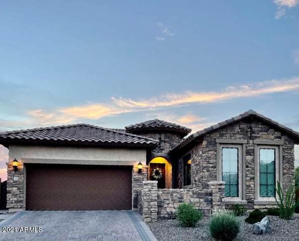 1650 N Red Cliff, Mesa, AZ 85207 (MLS #6297820) :: The Property Partners at eXp Realty