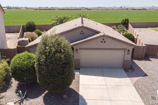 4571 E Longhorn Street, San Tan Valley, AZ 85140 (MLS #6297825) :: CANAM Realty Group