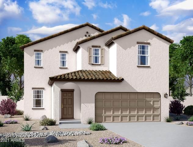 6063 E Helios Drive, Florence, AZ 85132 (MLS #6297827) :: Elite Home Advisors