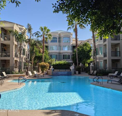 420 W 1ST Street #224, Tempe, AZ 85281 (MLS #6297829) :: Elite Home Advisors