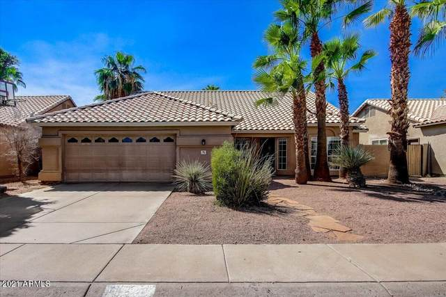 780 N Pineview Drive, Chandler, AZ 85226 (MLS #6297839) :: Elite Home Advisors