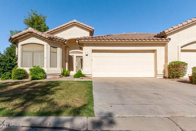 23732 S Pleasant Way, Sun Lakes, AZ 85248 (MLS #6297840) :: The Bole Group | eXp Realty