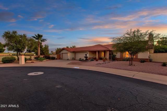 12142 S Tomi Drive, Phoenix, AZ 85044 (MLS #6297849) :: The Bole Group | eXp Realty