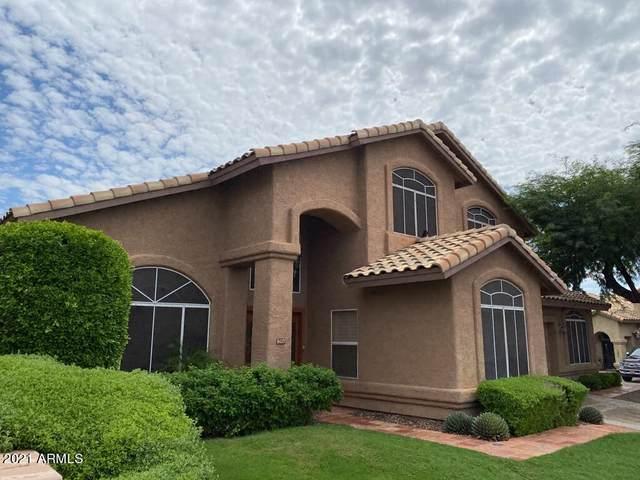 16237 S 13TH Street, Phoenix, AZ 85048 (MLS #6297859) :: Elite Home Advisors