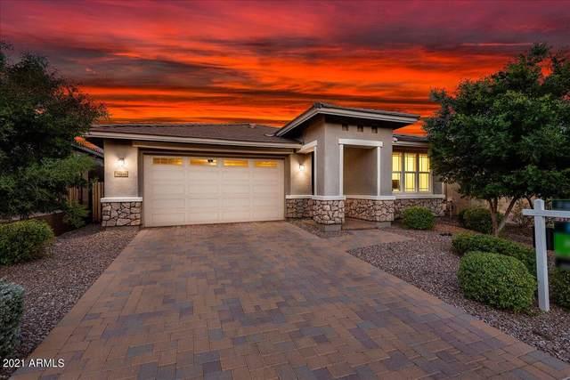 30699 N 137TH Avenue, Peoria, AZ 85383 (MLS #6297863) :: Jonny West Real Estate
