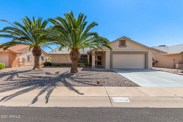 20019 N Trading Post Drive, Sun City West, AZ 85375 (MLS #6297870) :: NextView Home Professionals, Brokered by eXp Realty