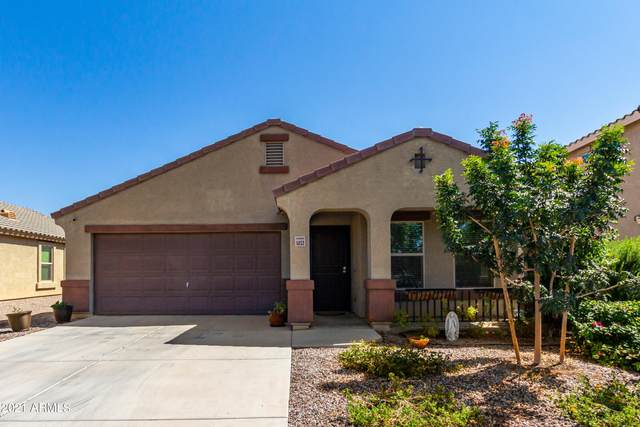 5033 S 236TH Drive, Buckeye, AZ 85326 (MLS #6297879) :: Power Realty Group Model Home Center
