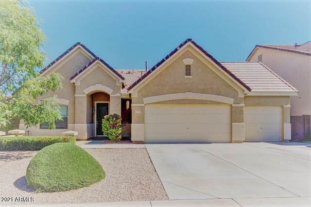 1123 S Jesse Place, Chandler, AZ 85286 (MLS #6297887) :: NextView Home Professionals, Brokered by eXp Realty