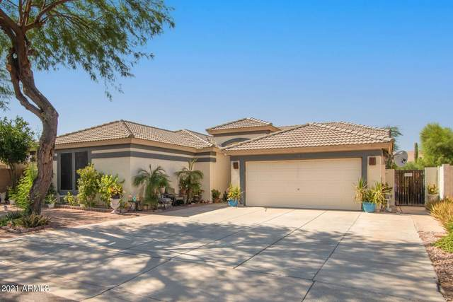 16172 W Marconi Avenue, Surprise, AZ 85374 (MLS #6297904) :: Power Realty Group Model Home Center