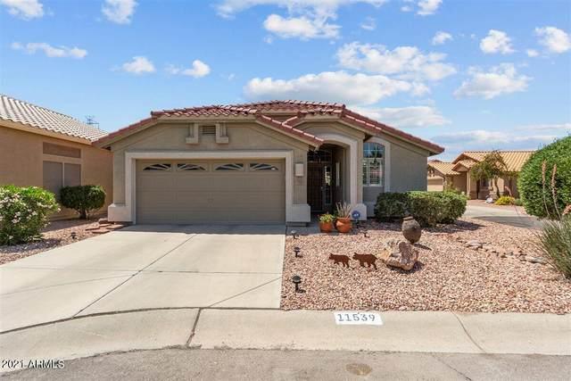 11539 W Bobcat Court, Surprise, AZ 85378 (MLS #6297913) :: The Daniel Montez Real Estate Group