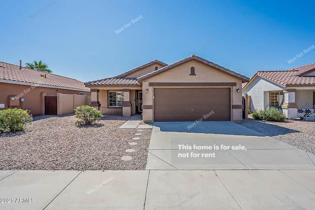 2441 E Derringer Way, Chandler, AZ 85286 (MLS #6297929) :: Elite Home Advisors