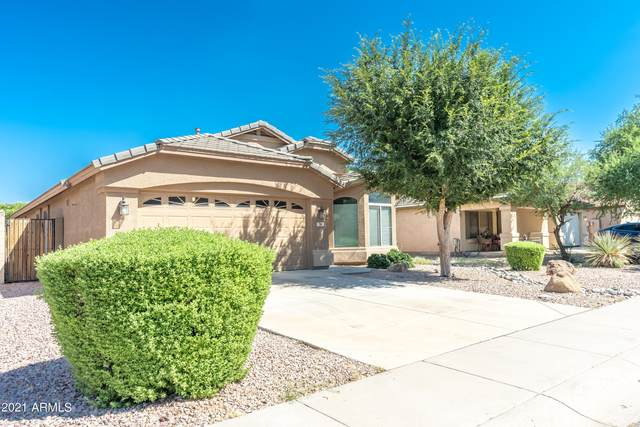 76 W Dexter Way, San Tan Valley, AZ 85143 (MLS #6297958) :: NextView Home Professionals, Brokered by eXp Realty