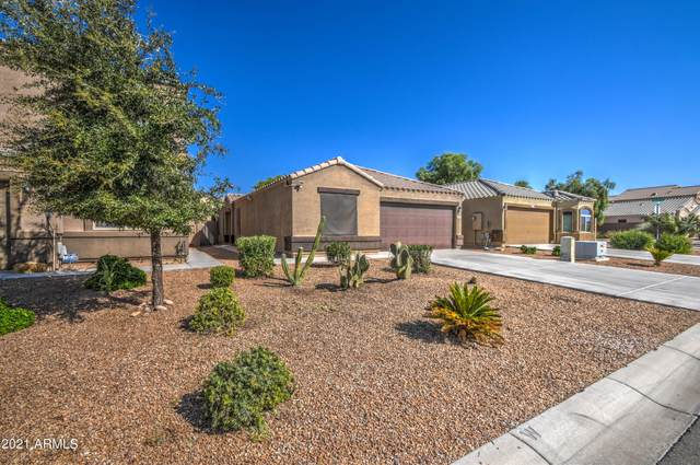 4604 E Jadeite Drive, San Tan Valley, AZ 85143 (MLS #6297970) :: NextView Home Professionals, Brokered by eXp Realty