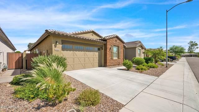 4050 W Ross Avenue, Glendale, AZ 85308 (MLS #6297980) :: Klaus Team Real Estate Solutions