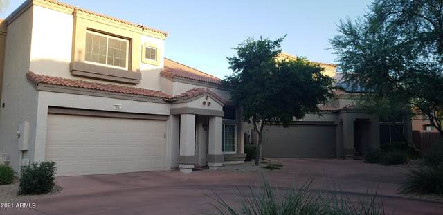 17606 N 17TH Place #1033, Phoenix, AZ 85022 (MLS #6297993) :: Power Realty Group Model Home Center