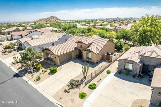 1135 W Desert Aster Road, San Tan Valley, AZ 85143 (MLS #6298021) :: NextView Home Professionals, Brokered by eXp Realty