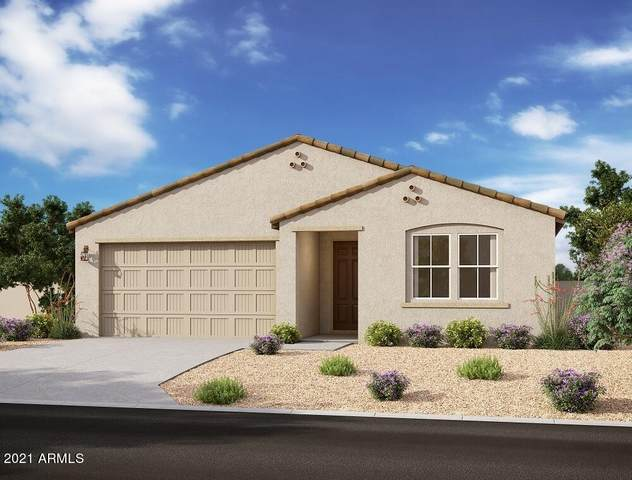 13357 W Tether Trail, Peoria, AZ 85383 (MLS #6298035) :: Yost Realty Group at RE/MAX Casa Grande