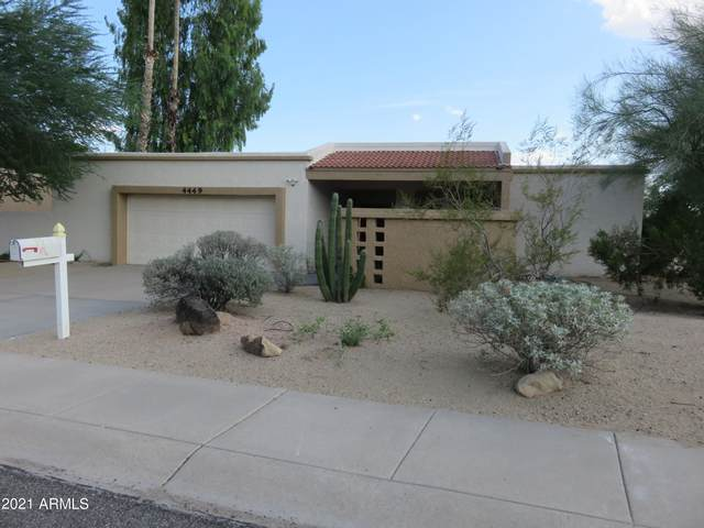 4449 E Desert View Drive, Phoenix, AZ 85044 (MLS #6298124) :: The Property Partners at eXp Realty