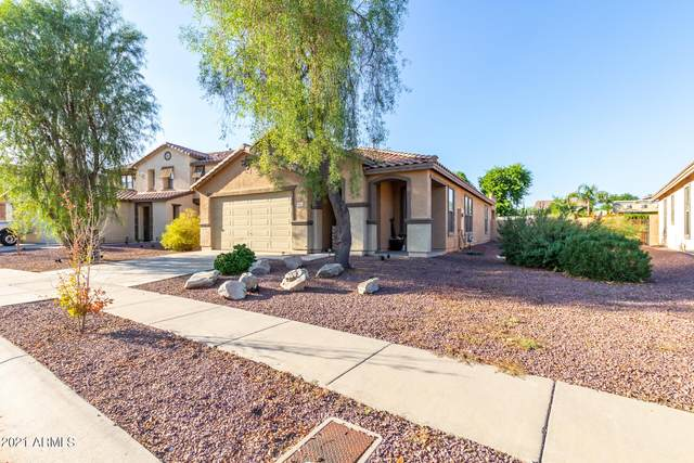 16446 W Prickly Pear Trail, Surprise, AZ 85387 (MLS #6298165) :: Power Realty Group Model Home Center