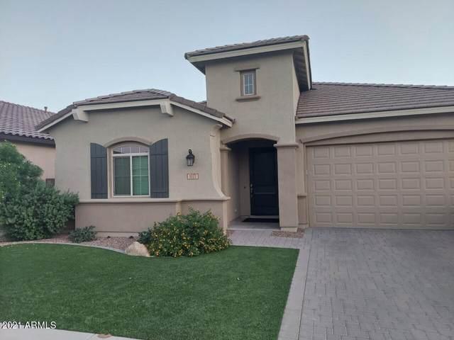 1177 W Snowbell Avenue, Queen Creek, AZ 85140 (MLS #6298173) :: My Home Group