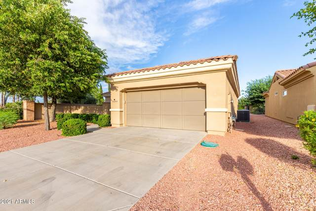 22839 N Arrellaga Drive, Sun City West, AZ 85375 (MLS #6298176) :: Openshaw Real Estate Group in partnership with The Jesse Herfel Real Estate Group
