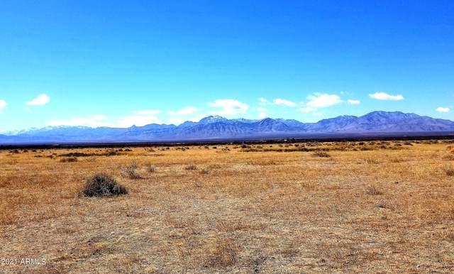 2311 N Noland Road, San Simon, AZ 85632 (MLS #6298189) :: The Daniel Montez Real Estate Group