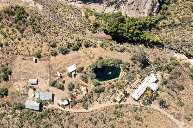 42650 N 52nd Street, Cave Creek, AZ 85331 (MLS #6298194) :: Executive Realty Advisors