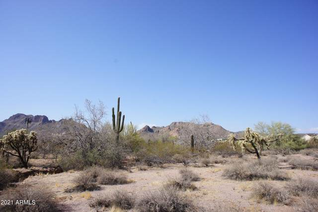 0 E Frontier Street, Apache Junction, AZ 85119 (MLS #6298198) :: Openshaw Real Estate Group in partnership with The Jesse Herfel Real Estate Group