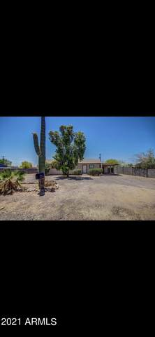 302 S Elmont Drive, Apache Junction, AZ 85120 (MLS #6298282) :: Openshaw Real Estate Group in partnership with The Jesse Herfel Real Estate Group