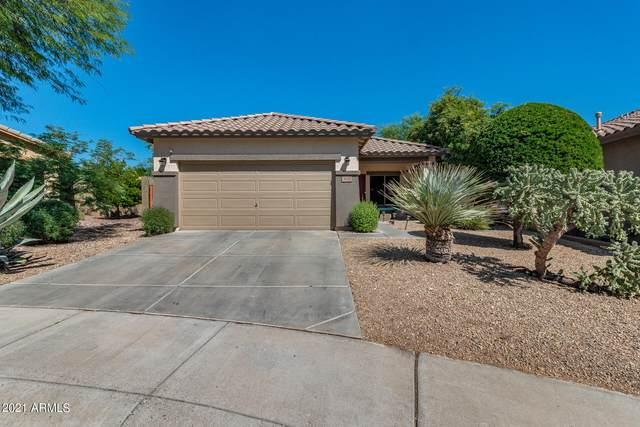 3626 W Webster Court, Anthem, AZ 85086 (MLS #6298288) :: The Daniel Montez Real Estate Group