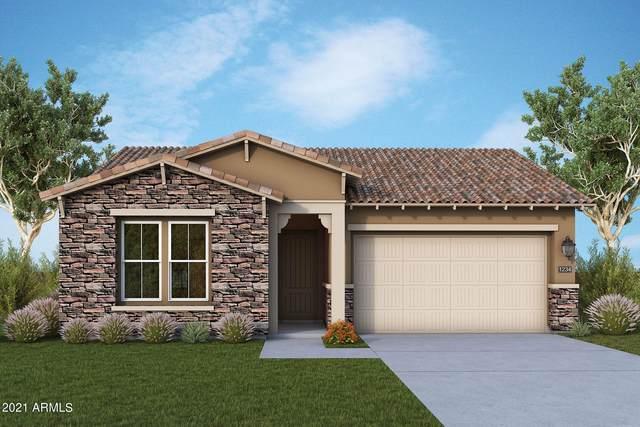 13242 W Horsetail Trail, Peoria, AZ 85383 (MLS #6298317) :: Jonny West Real Estate