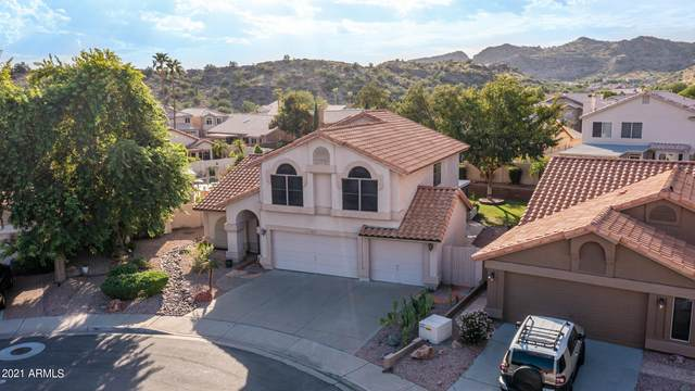 14812 S 24TH Place, Phoenix, AZ 85048 (MLS #6298319) :: Yost Realty Group at RE/MAX Casa Grande