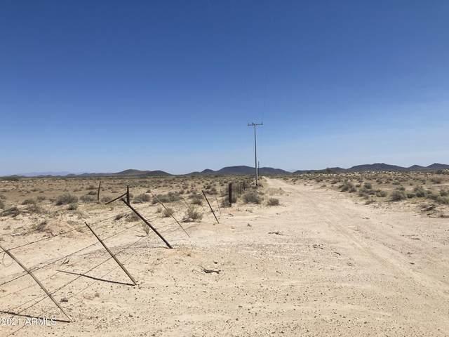 00 W Narramore Road, Tonopah, AZ 85354 (MLS #6298338) :: The Daniel Montez Real Estate Group