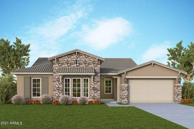 13230 W Woodstock Road, Peoria, AZ 85383 (MLS #6298373) :: Power Realty Group Model Home Center