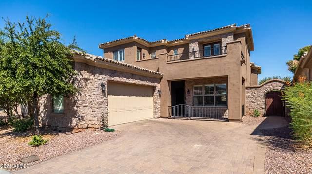 14584 W Hidden Terrace Loop, Litchfield Park, AZ 85340 (MLS #6298395) :: Elite Home Advisors
